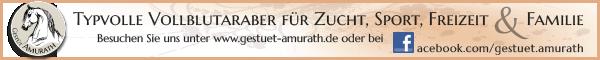 Gestüt Amurath - Typvolle Vollblutaraber für Zucht, Sport, Freizeit und Familie