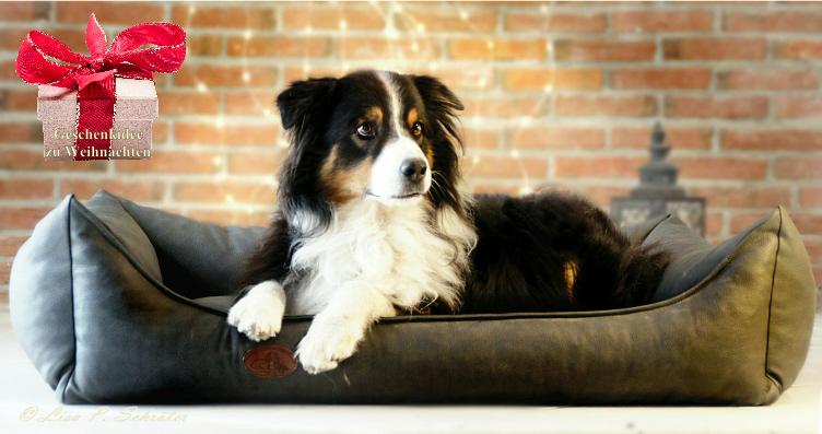 Weihnachtsmarkt - Das orthopädische Hundebett Nevada für Hunde mit Arthrose oder HD