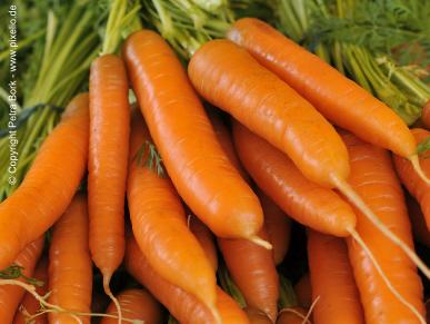 Morosche Karottensuppe bei akutem Durchfall - Rezept
