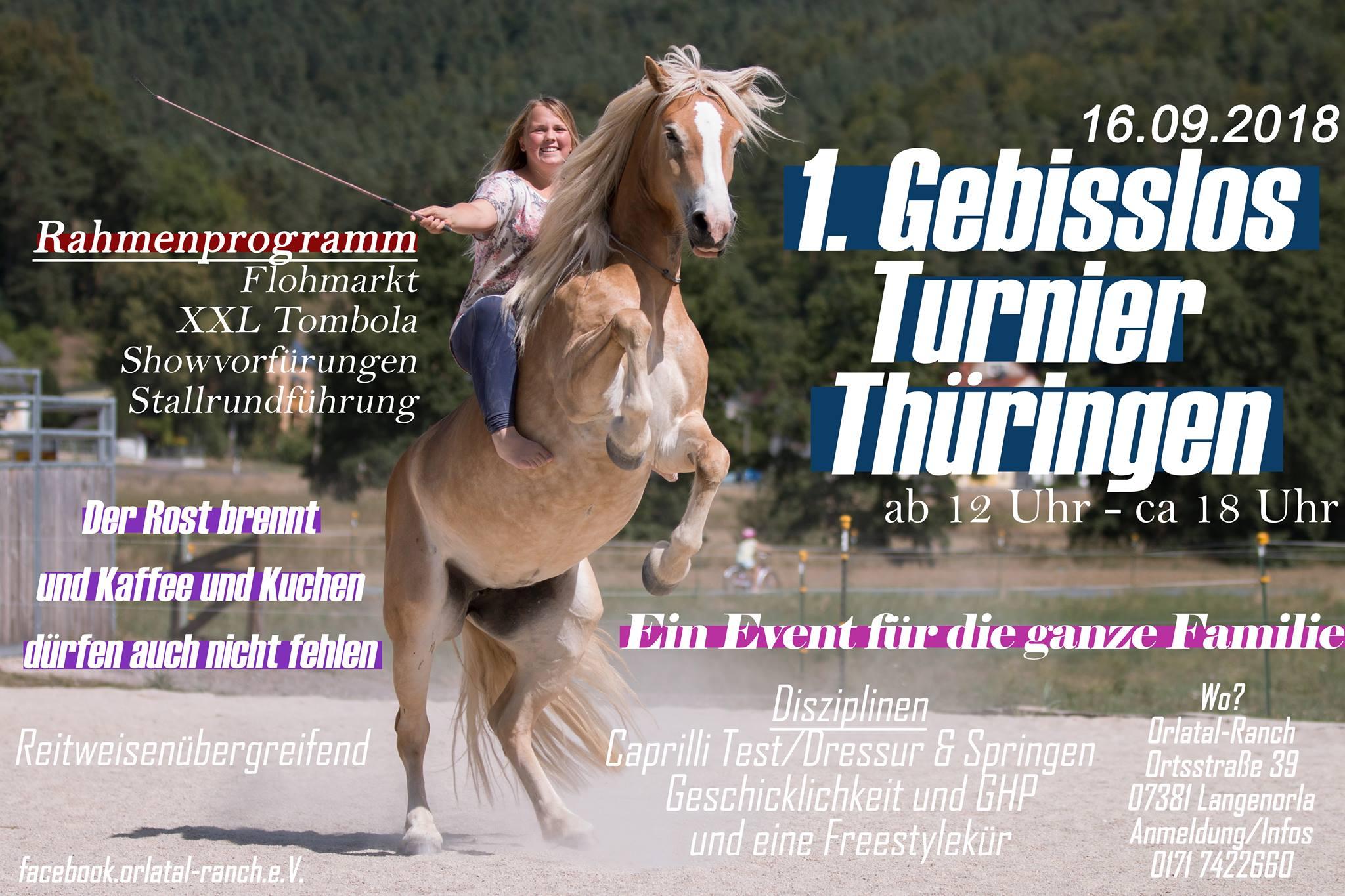 Erstes Gebisslos-Turnier in Thüringen