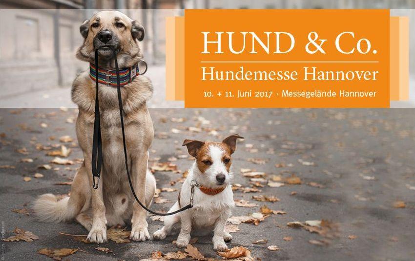 Die neue Messe HUND & Co. in Hannover ist gut angekommen!