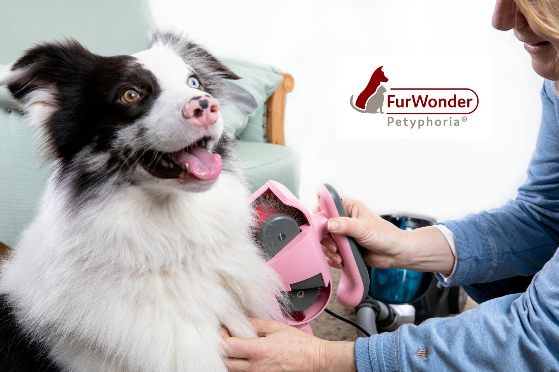 FurWonder: Die elektrische Hundebürste
