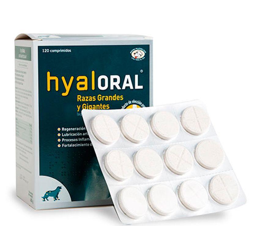 HyalOraL für Hunde und Katzen - Mehr Mobilität bei Gelenkpoblemen