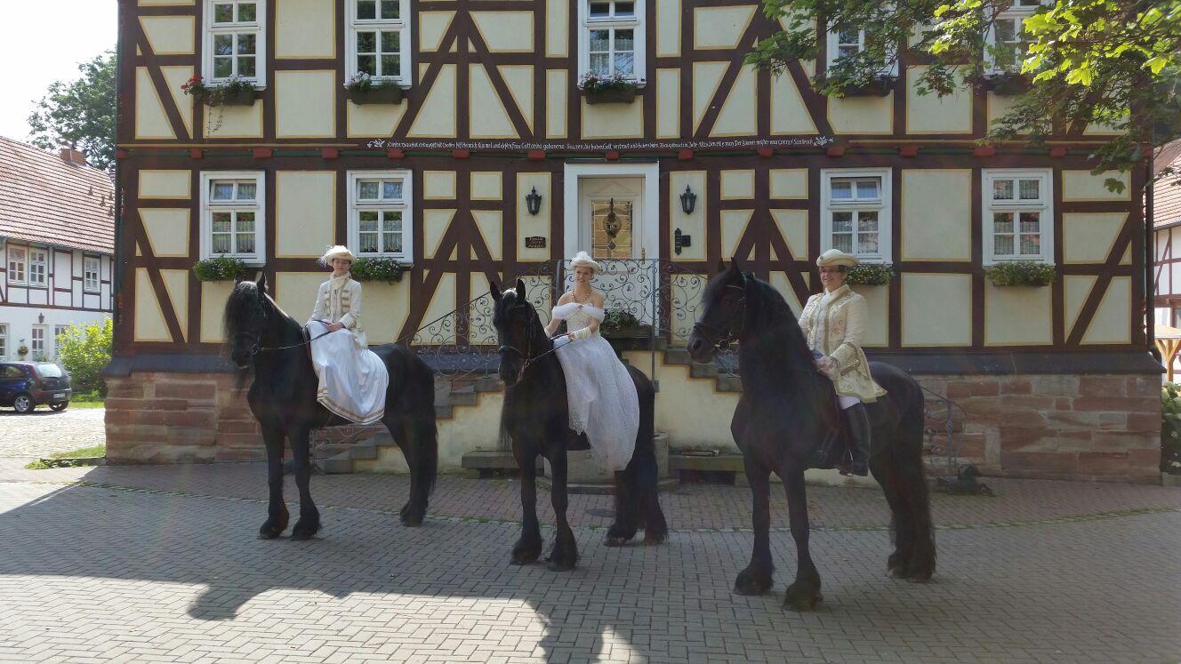 Gut Dankerode - Pferdesport und Pferdespaß ohne Grenzen