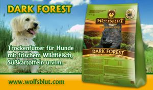 wolfsblut Dark Forest1