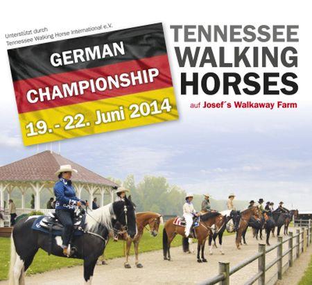 Tennessee walking horse züchter deutschland