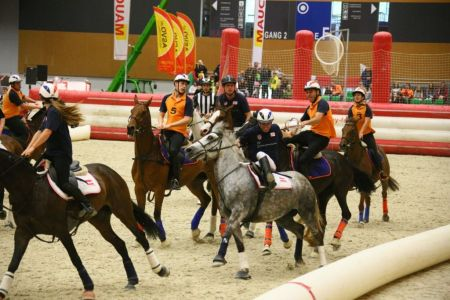 PFERD14 Horse-Ball Quelle Messe Wels